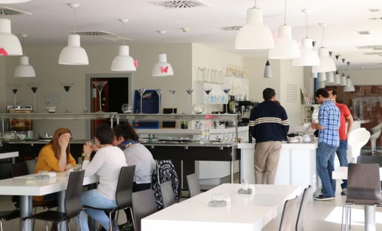 Proceso de selección de empresa para cafetería en Geolit