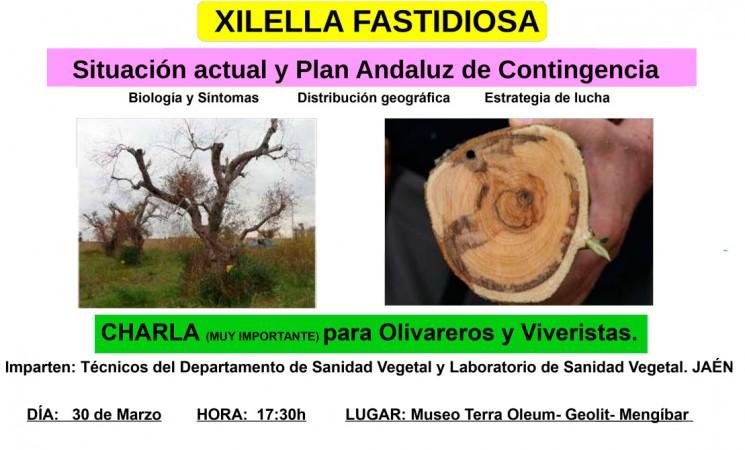 Charla sobre la xilella fastidiosa para olivareros y viveristas, el 30 de marzo