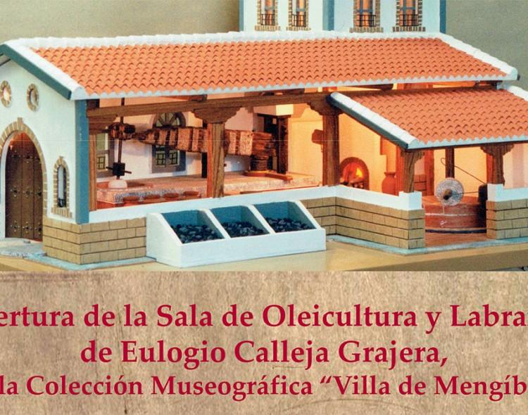 La apertura de la nueva sala de la Colección de Eulogio Calleja, el viernes 24 de noviembre