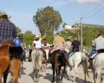 Romería de Mengíbar 2018 – Horario de paseo de caballos en el recinto romero