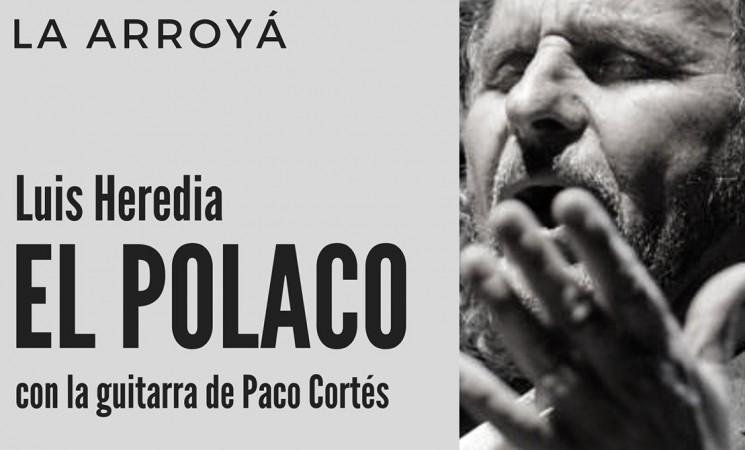 Luis Heredia 'El Polaco' y Paco Cortés, este viernes en la Peña Flamenca La Arroyá de Mengíbar