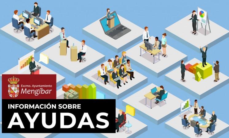 Ayudas para fomentar el empleo por cuenta propia entre los estudiantes y titulados de la Universidad de Jaén