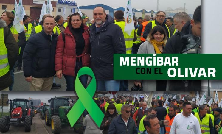 Presencia del Ayuntamiento de Mengíbar en las concentraciones de defensa del olivar tradicional