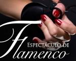 Espectáculo de flamenco con María del Mar López Ramírez
