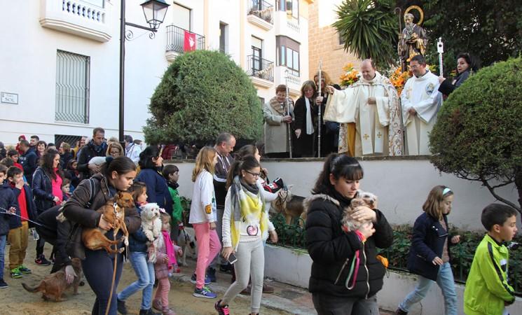 Multitudinaria bendición de animales con motivo de la fiesta de San Antón en Mengíbar
