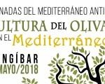 Mengíbar acogerá la jornada 'Cultura del olivar en el Mediterráneo' el próximo 8 de mayo