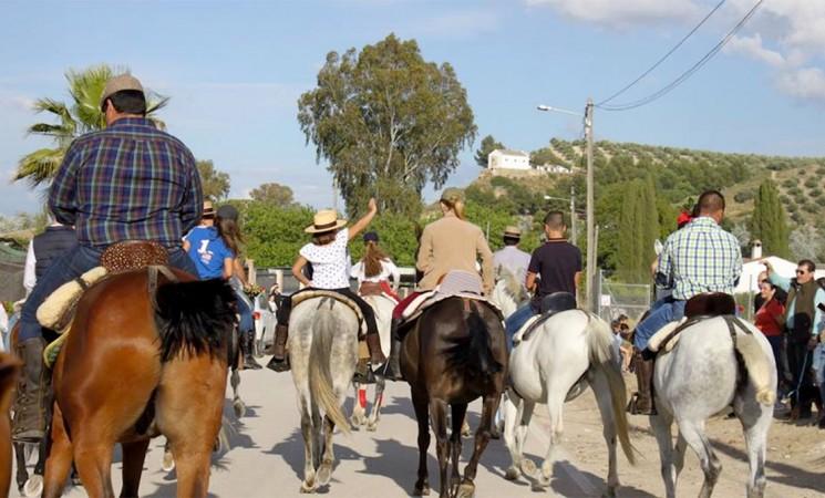 Romería de Mengíbar 2019 - Horario de paseo de caballos en el recinto romero