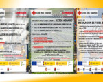 Cursos de formación del Plan de Empleo Comarcal de Cruz Roja cofinanciados por el Ayuntamiento de Mengíbar y dirigidos a personas desempleadas