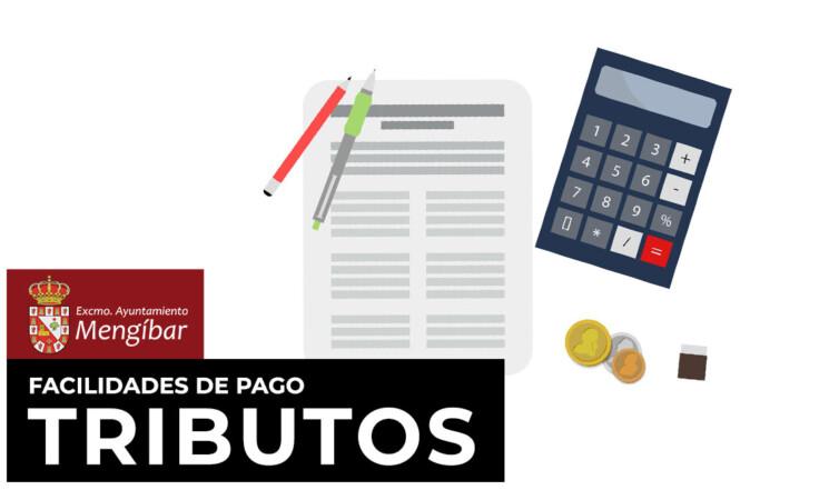La Diputación de Jaén habilita planes personalizados para facilitar el pago de los tributos municipales