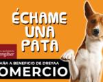 Campaña 'Échame una pata': ayuda desde el comercio de Mengíbar a la protectora de animales Dreyaa